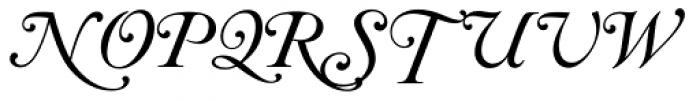 Caslon Italic Swashes Font UPPERCASE