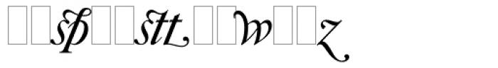 Caslon Italic Swashes Font LOWERCASE