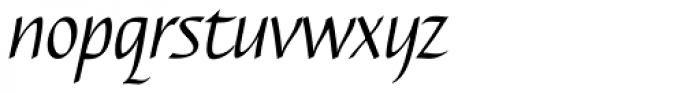 Caterina Light Italic Font LOWERCASE