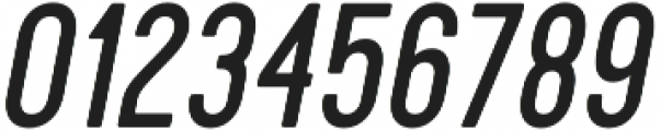 Cervo Regular Italic otf (400) Font OTHER CHARS