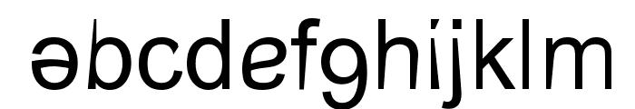 CerebralPares Falk Font LOWERCASE