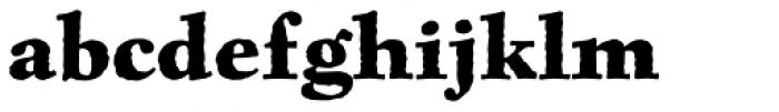 Celestia Antiqua Std Bold Font LOWERCASE
