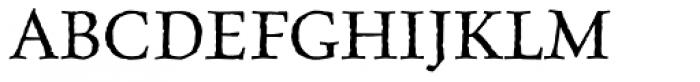 Celestia Antiqua Std Italic Font UPPERCASE