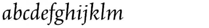 Celestia Antiqua Std Italic Font LOWERCASE