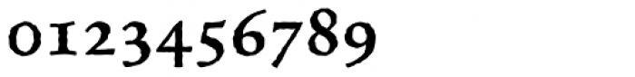 Celestia Antiqua Std SemiBold Font OTHER CHARS