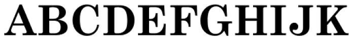 Century Schoolbook Pro Cyrillic Bold Font UPPERCASE