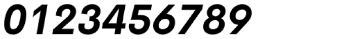 Cerebri Sans Bold Italic Font OTHER CHARS