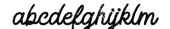 Adventure Island ScriptBoldHalftone Font LOWERCASE