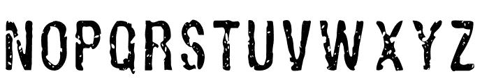 Alligator Font LOWERCASE