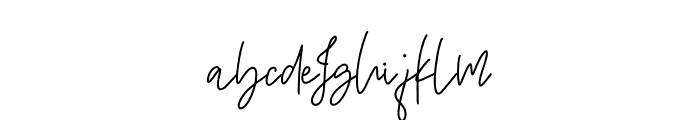 Amsterdam Script Font LOWERCASE