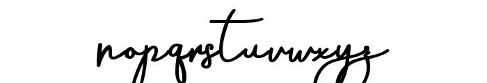AneishaScriptBold Font LOWERCASE