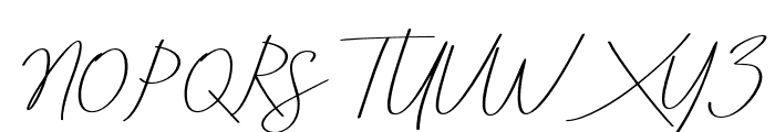 AneishaScriptitalic Font UPPERCASE