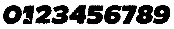BOTOTOROUGHITALIC Font OTHER CHARS