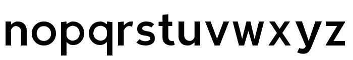 Berlin Regular Font LOWERCASE