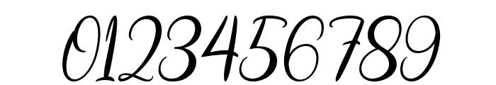 Biyanka Robert Italic Font OTHER CHARS