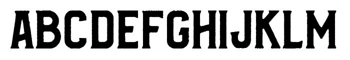 Bradley Rough Font LOWERCASE