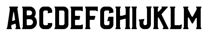 Bradley Solid Font LOWERCASE