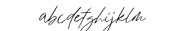 BradleySignature-Regular Font LOWERCASE