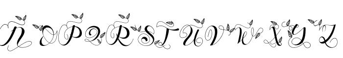 Branch Monogram Font LOWERCASE