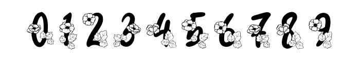 Carolina Monogram Font OTHER CHARS