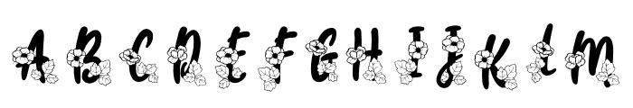 Carolina Monogram Font UPPERCASE