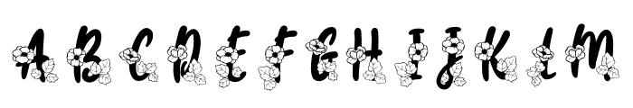Carolina Monogram Font LOWERCASE