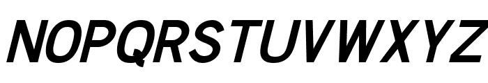 Chester Sans Bold Italic Font UPPERCASE