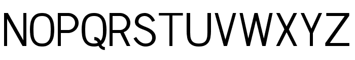 Chester Sans Book Font UPPERCASE