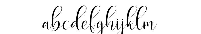 DelightScript Font LOWERCASE