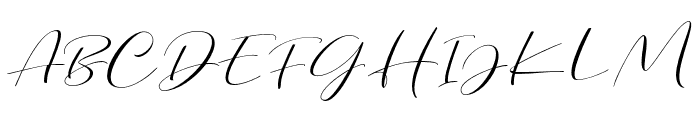 DorothyClark-Script Font UPPERCASE