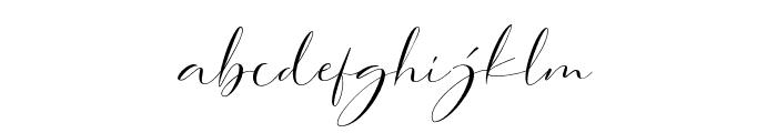 DorothyClark-Script Font LOWERCASE