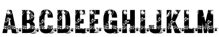 EVA  ADAM Font UPPERCASE