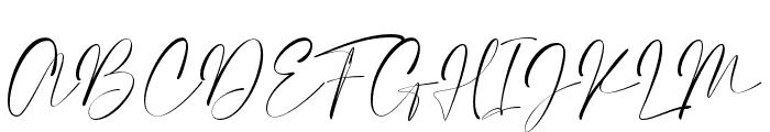 Elegant Signature Font UPPERCASE