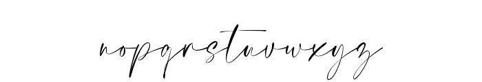 Elegant Signature Font LOWERCASE
