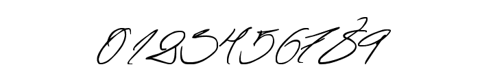 Fascinating Signature Font OTHER CHARS