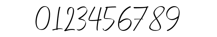 Feeling Signature Font OTHER CHARS