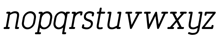 FinalistRoundSlab-55RegularItalic Font LOWERCASE