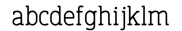 FinalistRoundSlab-55Regular Font LOWERCASE