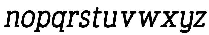 FinalistRoundSlab-65MediumItalic Font LOWERCASE