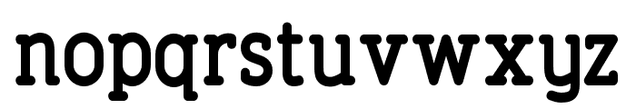 FinalistRoundSlab-75Bold Font LOWERCASE