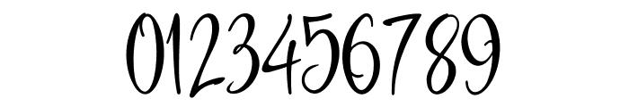 Havana Signature Font OTHER CHARS
