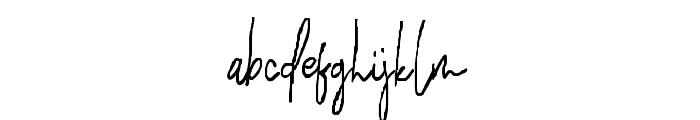 HilmounteSignature Font LOWERCASE
