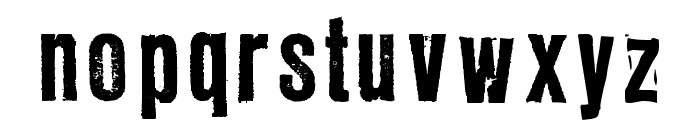 LLRubberGrotesque Font LOWERCASE