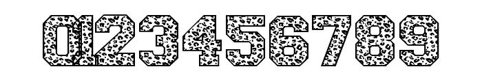 Leopard Varsity Leopard Varsity Font OTHER CHARS