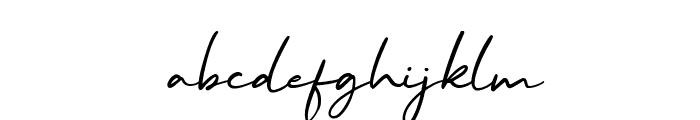 Malibu Sunset Script Font LOWERCASE