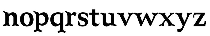 NN Camping Serif Font LOWERCASE