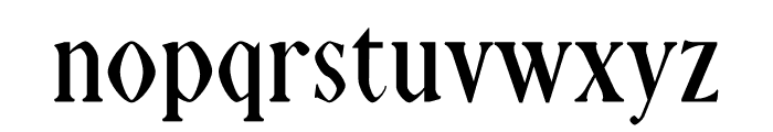 NN Tropical Serif Font LOWERCASE