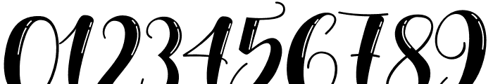 NelvitaShine-Regular Font OTHER CHARS