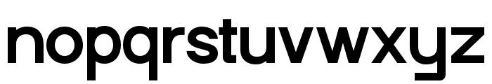 Punta-Bold Font LOWERCASE