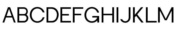 Punta-Lightflat Font UPPERCASE
